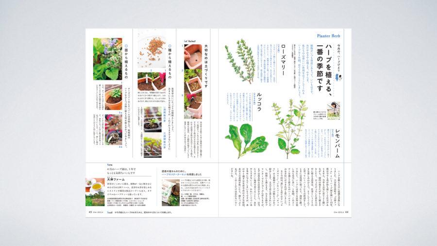 Planter Herb